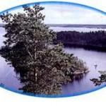 Järvisydän